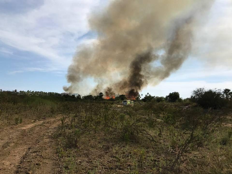 Más de 350 elementos y 91 unidades se requirieron para sofocar el fuego del Estero .