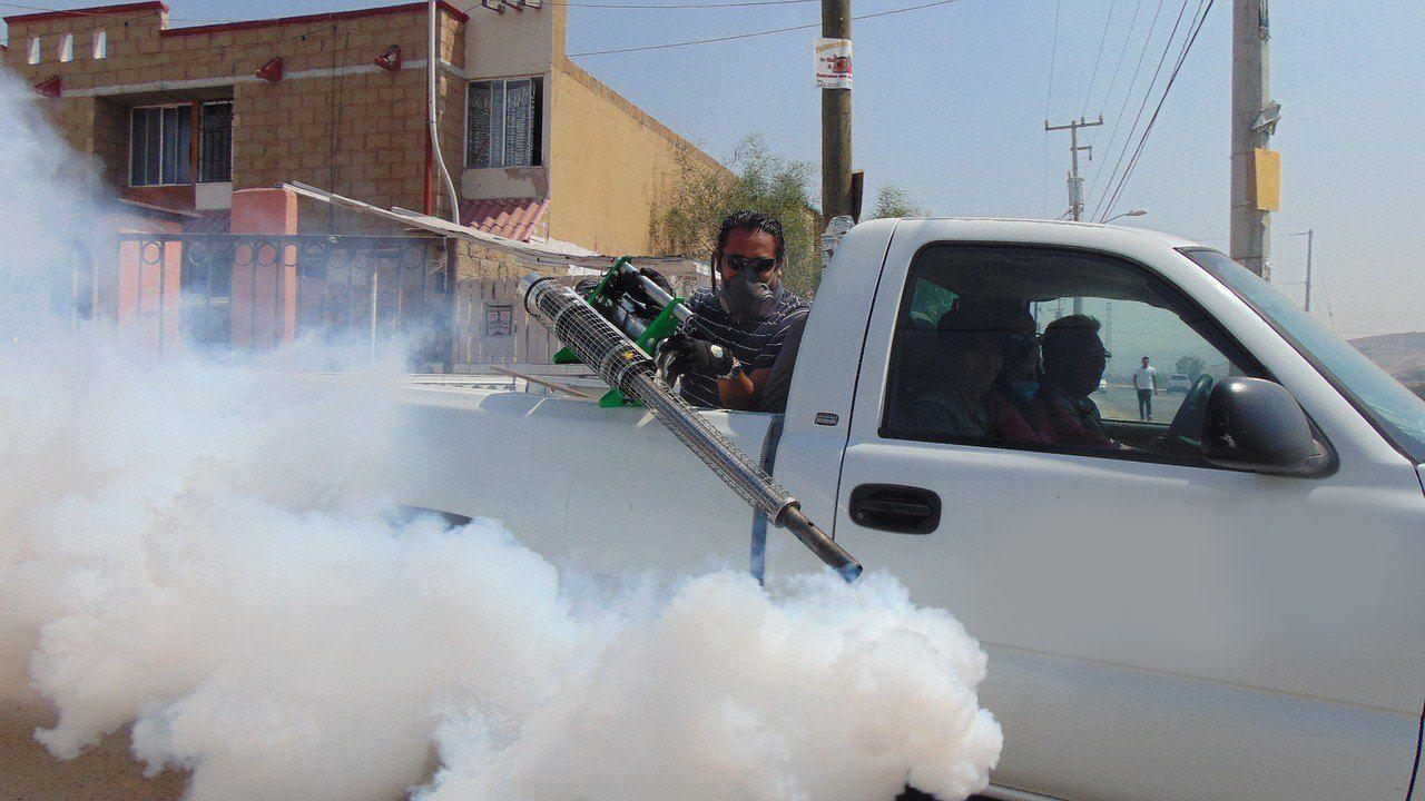aumentan-casos-de-dengue-en-baja-california-sur