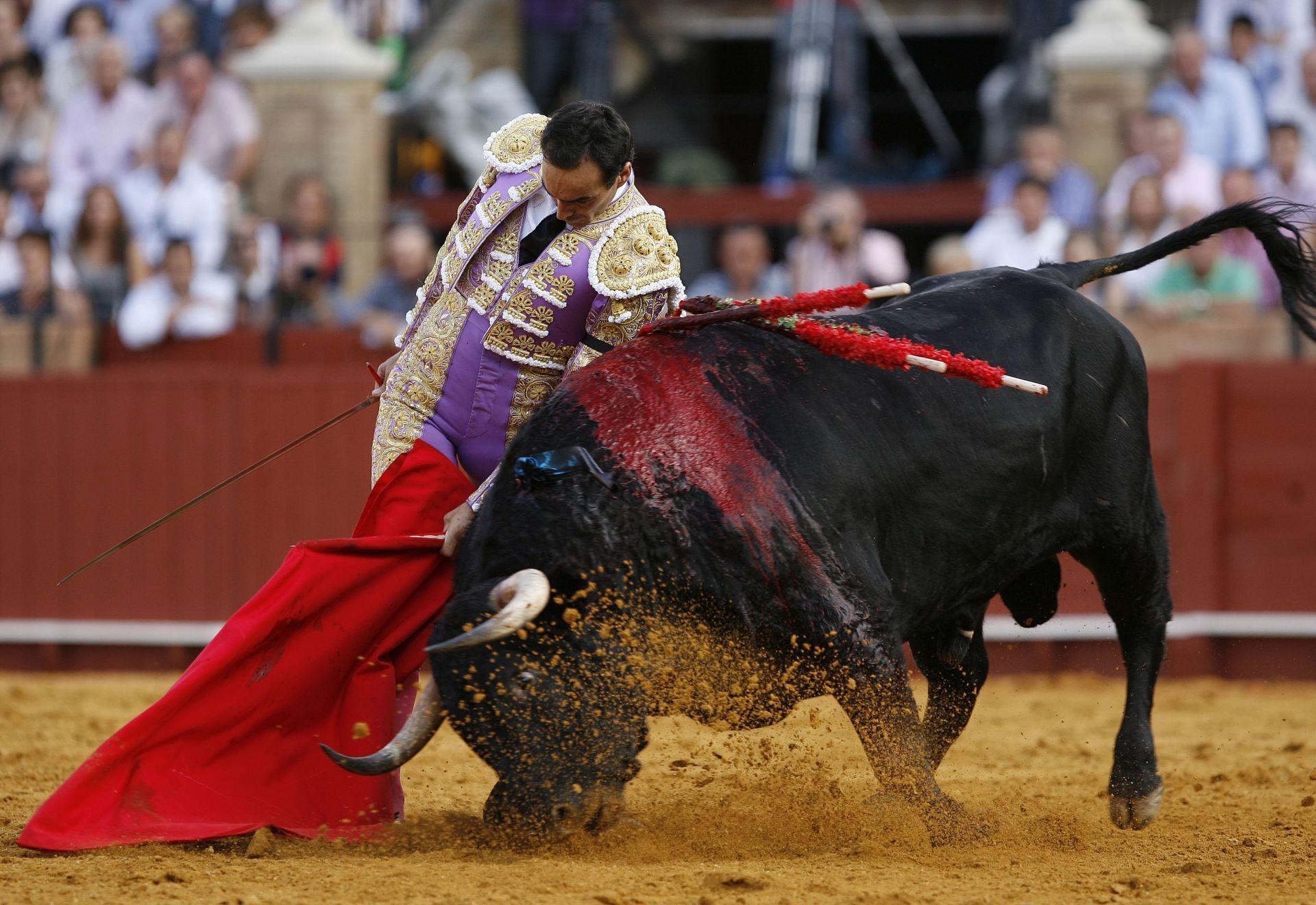 corrida-de-toros-en-mexico