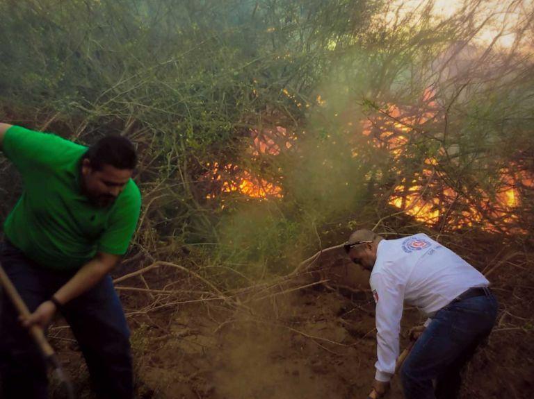 Incendio Forestal en La Ribera