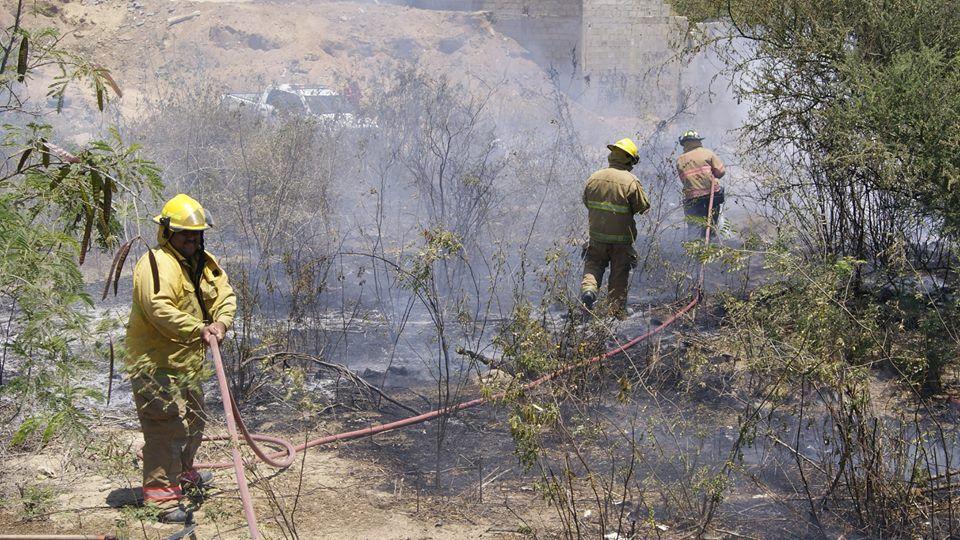 bomberos de cabo san lucas