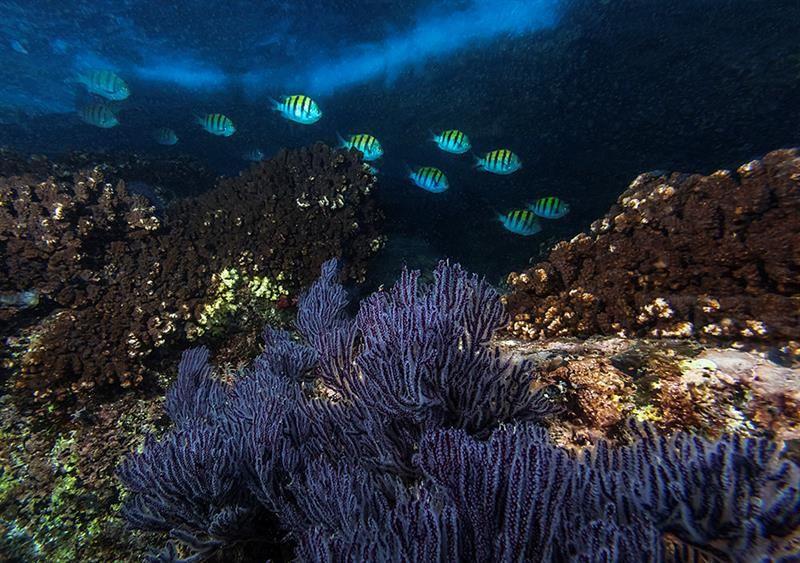 Bahía de Espíritu Santo, en el municipio de Los Cabos, en Baja California Sur (México).