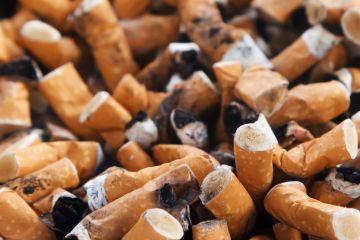 Investigadores mexicanos dan un uso sustentable a las colillas de cigarros