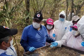 Familias de desaparecidos escarban fosas clandestinas con sus manos en México