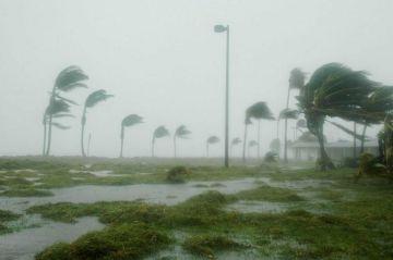 México espera el impacto de cuatro o cinco ciclones durante 2019