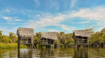 La Tovara, el santuario mexicano de 700 especies de plantas y fauna