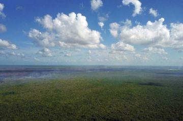 Daños por incendios en reserva natural Sian Ka'an pueden persistir 200 años