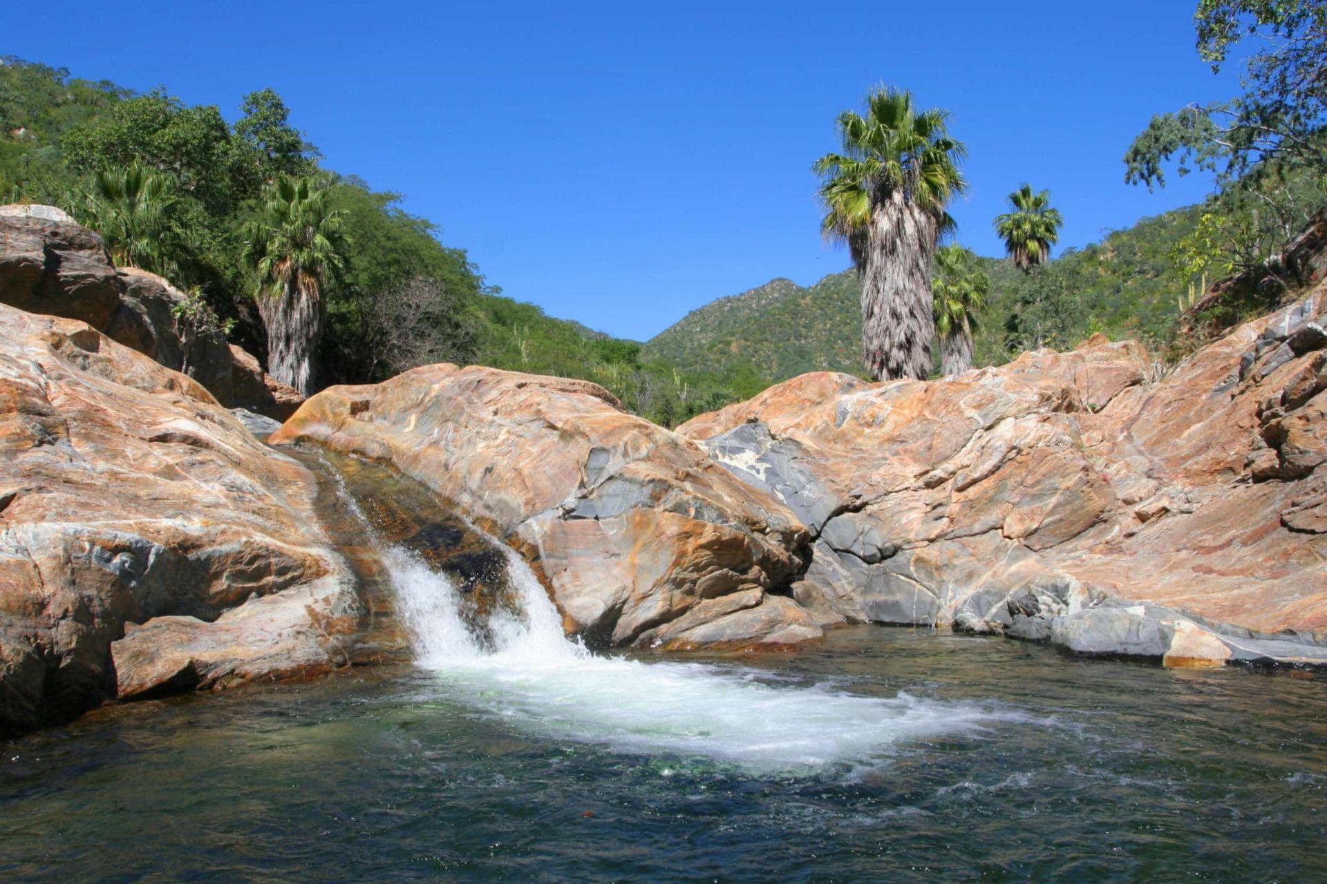 sierra de la laguna los cabos Baja California sur biosfera reserva