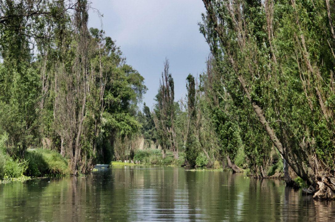 Vista general de los canales de Xochimilco, en Ciudad de México